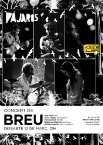 pajaros_breu_web